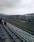 レース観戦中